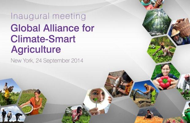 Inaugural CSA alliance meeting