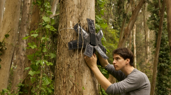 What can save the rainforests? Your used mobile phone